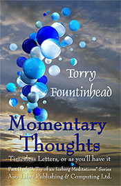 Momentary Thoughts by Torry Fountinhead