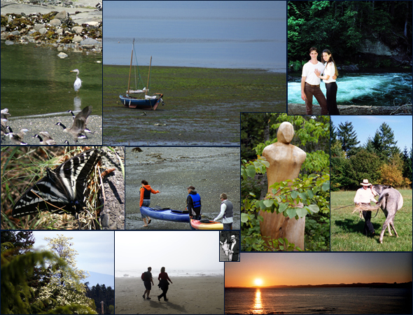 Collage of pictures of interest